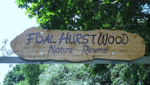 The Foal Hurst Wood sign at the entrance to the woods