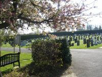 The New Cemetery