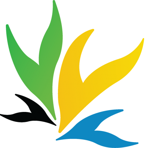 The Bereko Links Logo in black, green, yellow and blue
